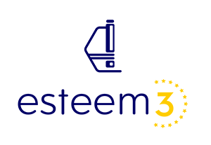 Esteem3 Logo